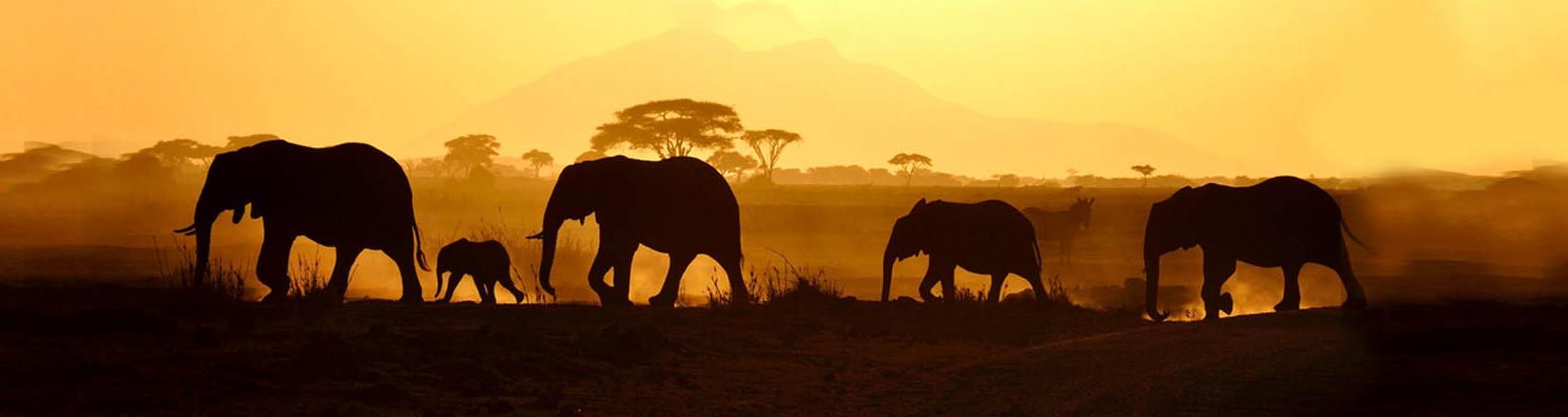 Afrikamaand